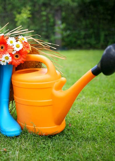 gardener-gardening
